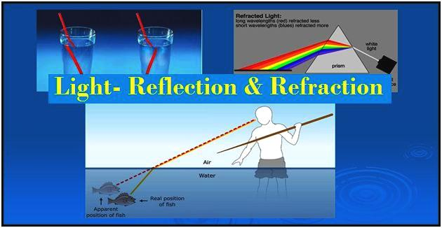 Light- Reflection and Refraction: NCERT Solutions