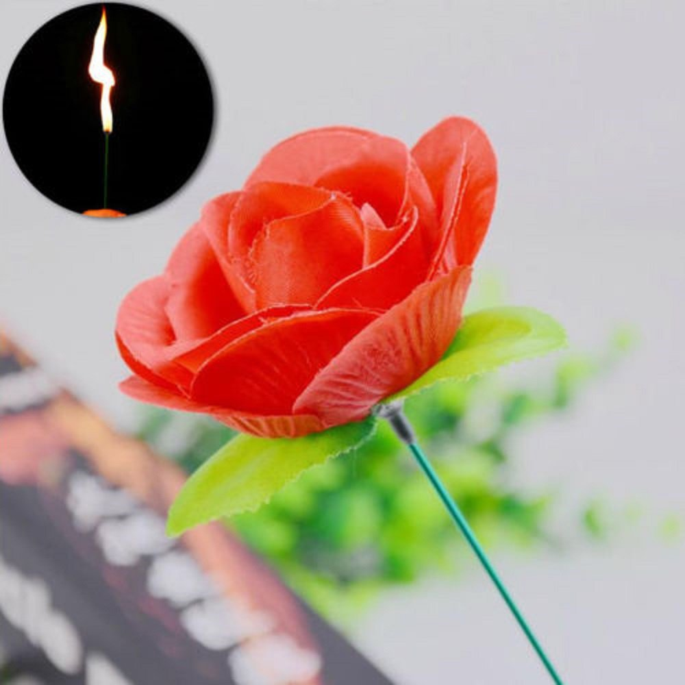 Flame Appearing Flower