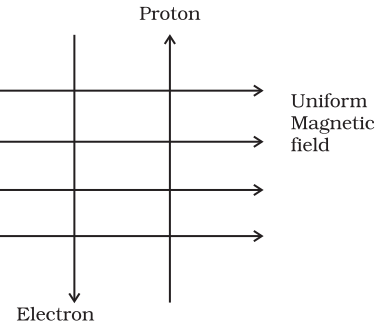 Electron Proton Movement in Magnetic Field Lines