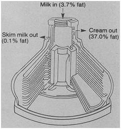 Cream Seperation