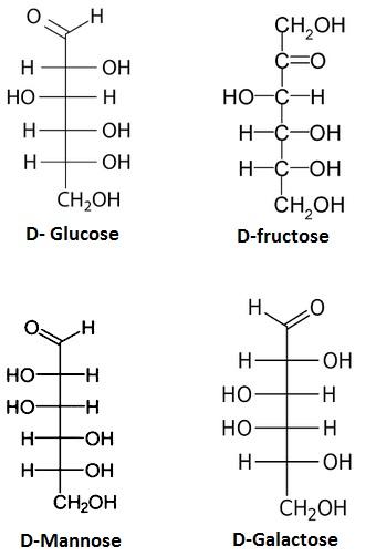UPSEE Bimolecules Concepts 1