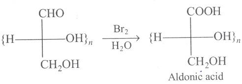 UPSEE Bimolecules Concepts 5