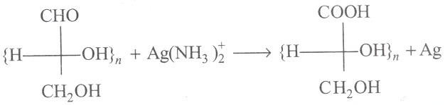 UPSEE Bimolecules Concepts 7