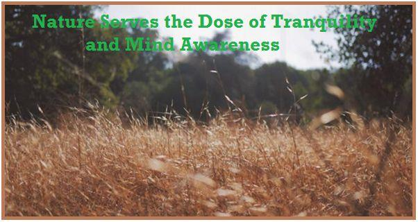 tips of mind awareness