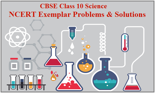 CBSE Class 10 Science NCERT Exemplar Solution, NCERT Exemplar, CBSE, Class 10 NCERT Exemplar Problems, NCERT Exemplar Class 10, Class 10 Science