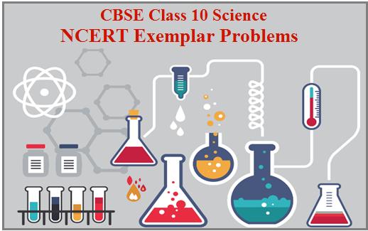 NCERT CBSE books, NCERT Exemplar, NCERT Exemplar Class 10, CBSE Class 10 NCERT Exemplar, NCERT Exemplar Science, NCERT Exemplar Science Class 10,