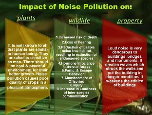 show me short essay of noise pollution