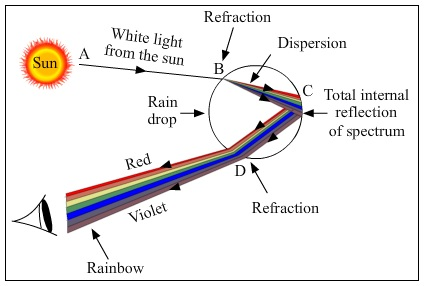 Short answer type questions for cbse class 10 science exam question 2 how are we able to see distant and nearby objects clearly which part of eye helps in changing curvature of lens ccuart Image collections