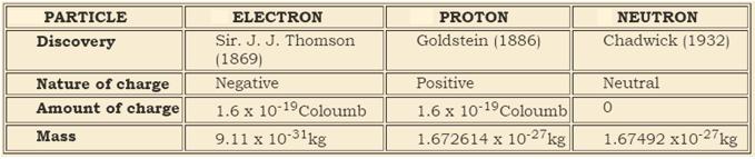 subatomic particles comparison