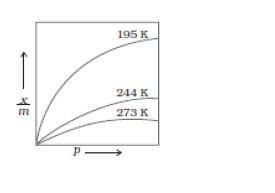 difference between homogeneous and heterogeneous catalysis pdf