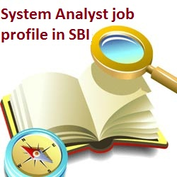 System analyst role in SBI
