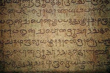 tamil anguage