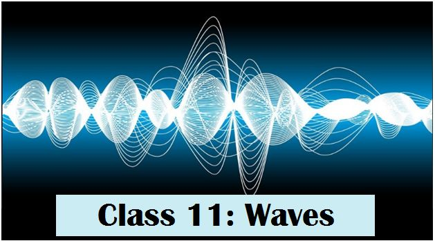 Waves: NCERT Solutions