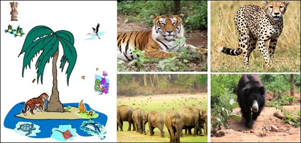 GK Questions and Answers on the India's Wildlife