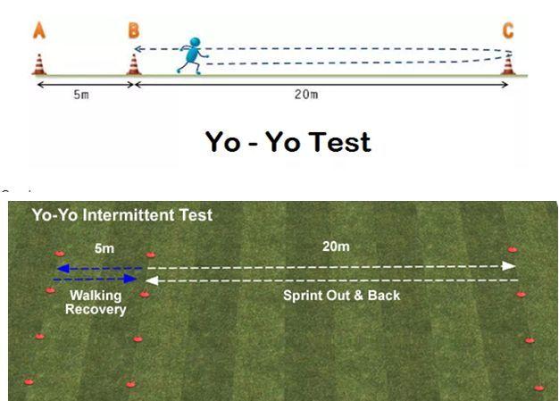 yo yo test cricket