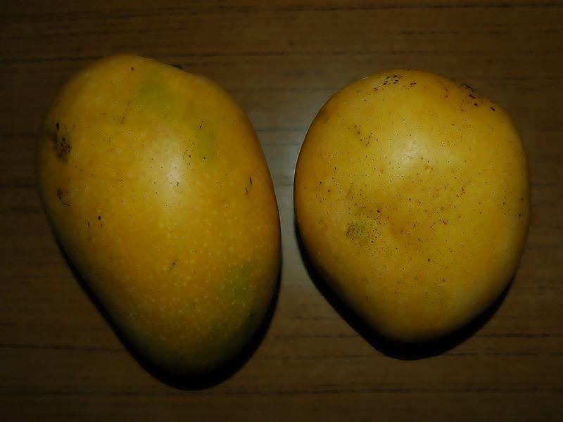 SBanganapalle Mango