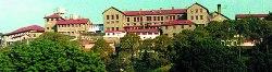 Pastures-Institute-Kasuli