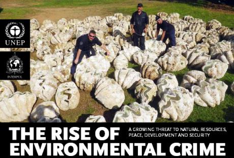 enviromental crime