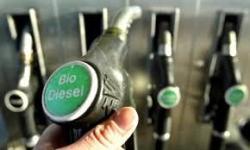 bio diesel 2016