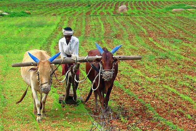 Union Cabinet approves Interest Subvention to banks on short-term crop loan to farmers