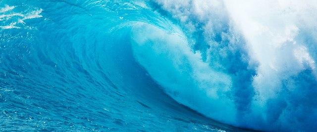 World Oceans Day 2017