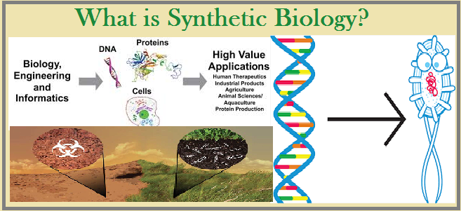 What is Synthetic Biology?
