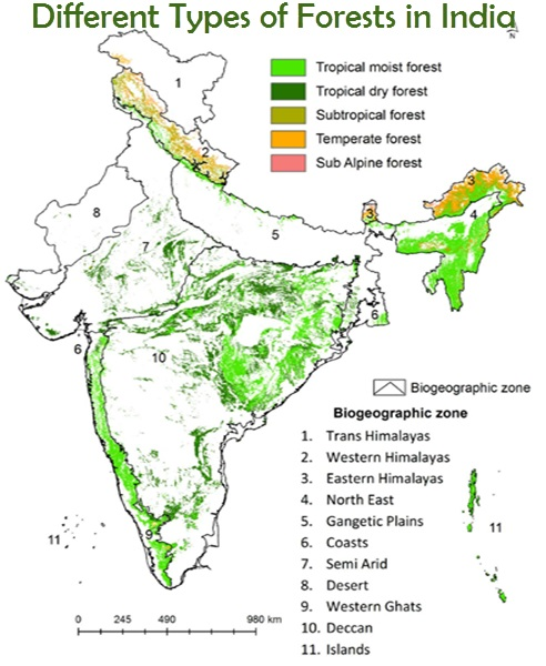 types-of-forests-in-india-map