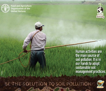 World Soil Day observed globally to raise awareness about soil pollution
